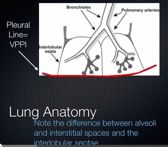 Introduction to Pulmonary Ultrasound By Critical Care