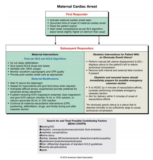Cardiac Arrest In Pregnancy From The 2010 Aha Guidelines With