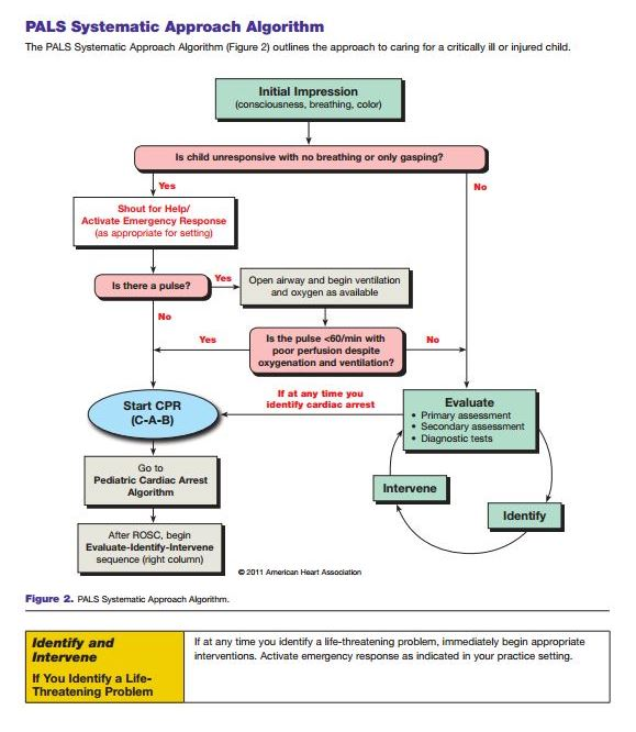 pals provider manual 2015 pdf free