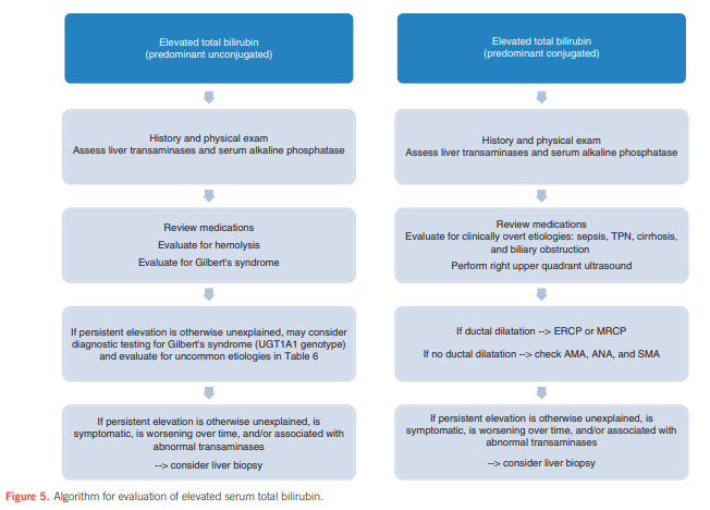 easl hcv guidelines 2017 pdf